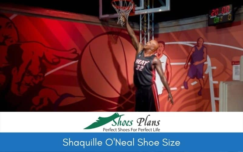 Shaquille O'Neal Shoe Size